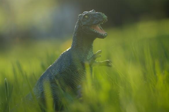 Dinosaurier vermehren sich in Frankfurt: Das Beweisfoto zeigt ein juveniles Exemplar von Tyrannosaurus rex, aufgenommen im Frankfurter Grüneburgpark am 1. April 2014